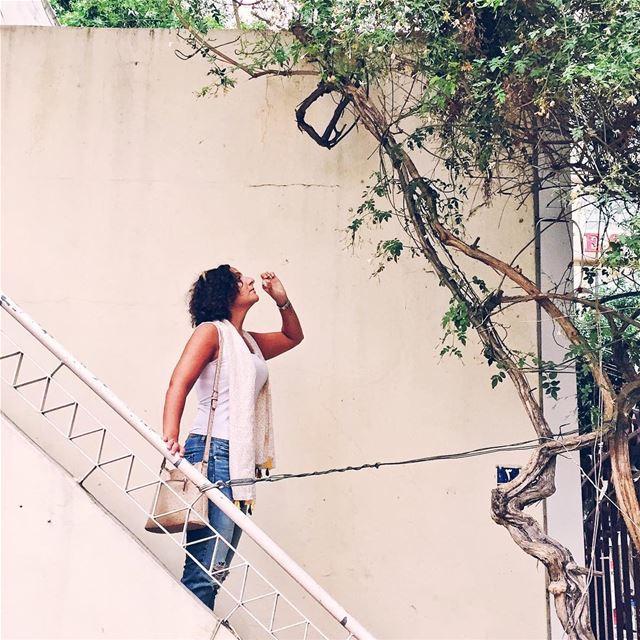 •صباح الفُلّ والياسمين• Philintravel LiveLoveLebanon HuntgramLebanon ... (شارع الحمرا بيروت)