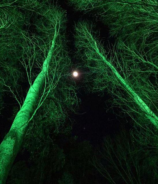 Silent Night instame instamood instahub mood silent night full moon...