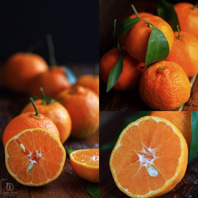 Lebanese Mandarins 🍊 studio photoshoot photography job ...