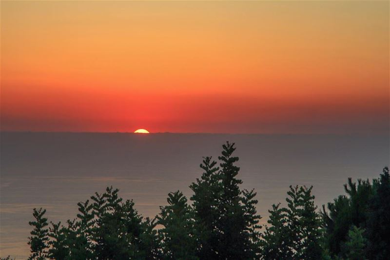If only I was a bit earlier 🙄 ocean sea sunset tree sun beirut ...