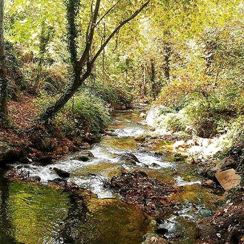 automn naturecolors natureadventure naturephotography hiking🌲... (Wadi qannoubine)