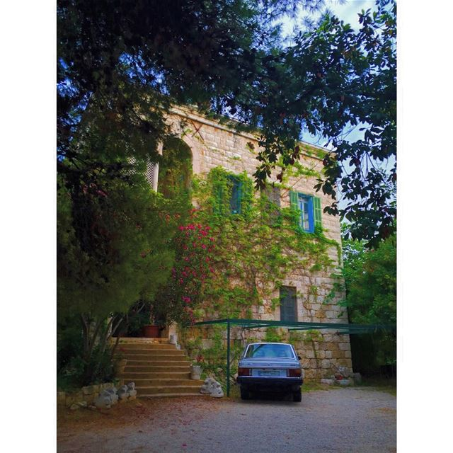 Old houses, I thought, do not belong to people ever, not really, people... (Zouk Mosbeh)