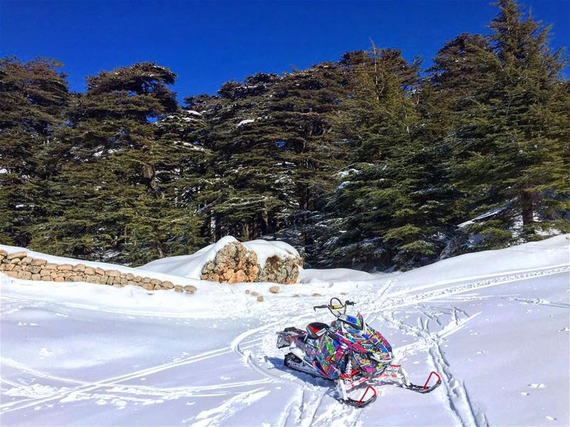 Beauty of Lebanon & the Fun of Snowmobile !! polarisriders  polaris ...