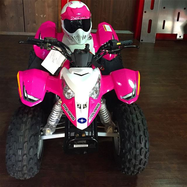It's a Pink kind of a day 💖  polarislebanon  polaris  rzr  rzr2017 ...