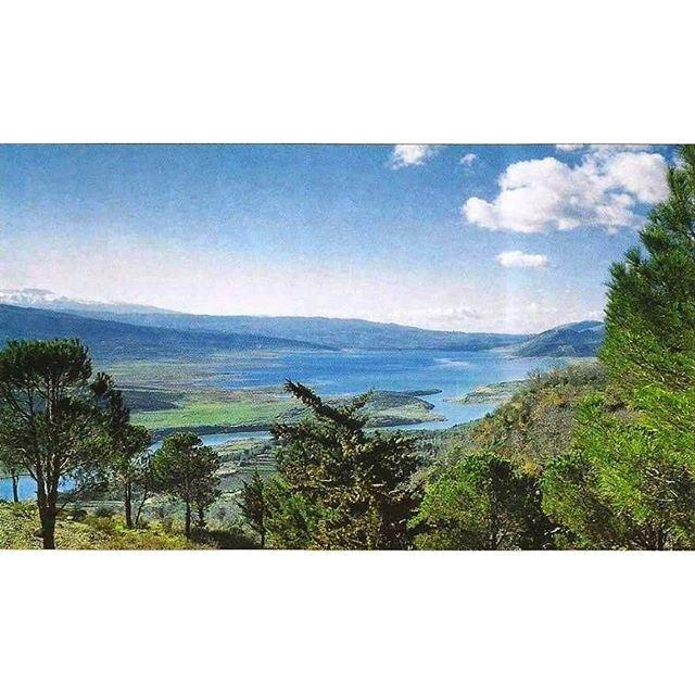 Qaraoun Lake WestBekaa 1967 .