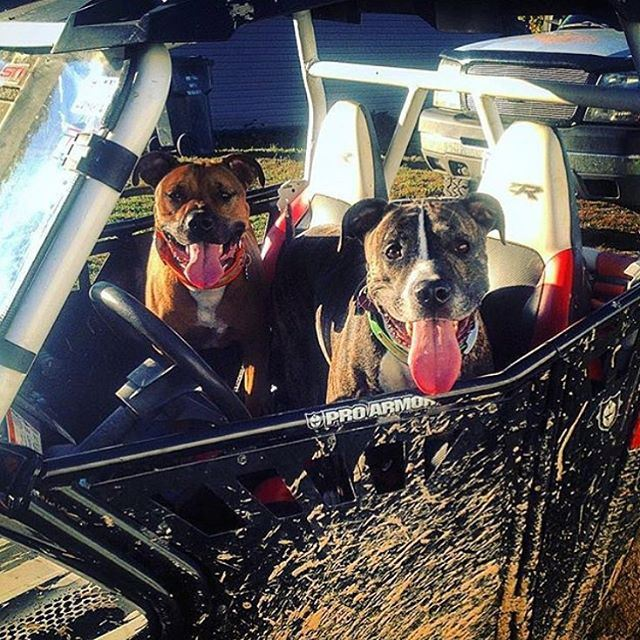 These guys look ready to hit the Trails! trip  letsride  hmf  warnwinch ...