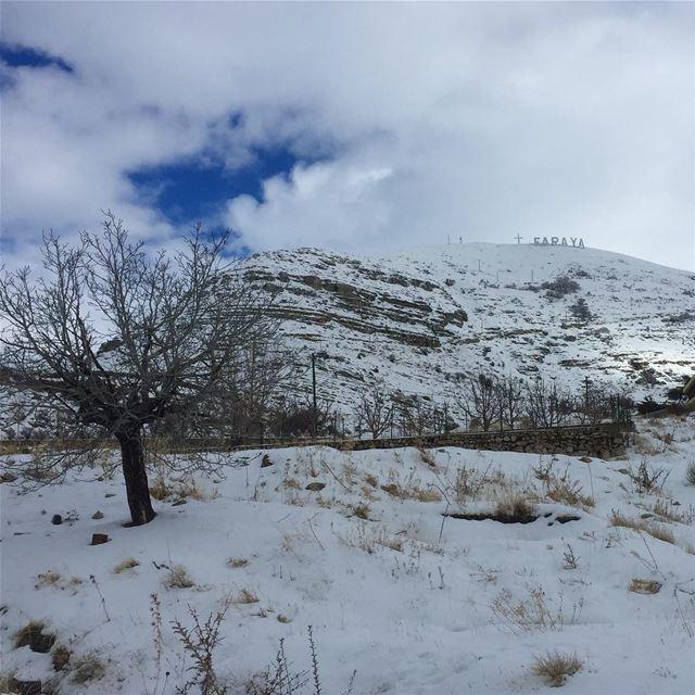 lebanon snow winter faraya mountain clouds nature naturegram ... (Faraya, Mont-Liban, Lebanon)
