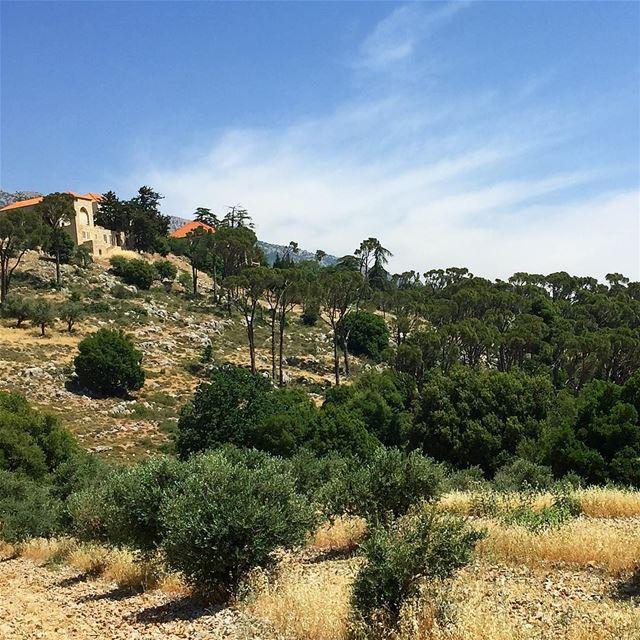 Lebanon whatsuplebanon ig_lebanon beautiful naturephotography nature... (`Ammiq, Béqaa, Lebanon)