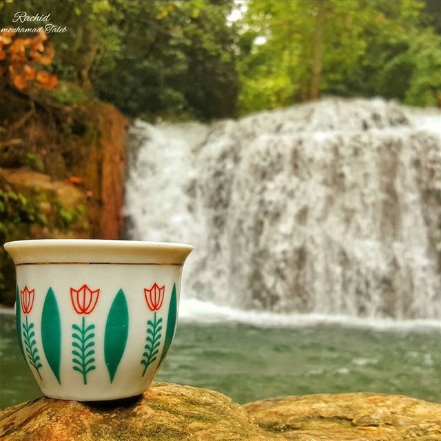 rachid♡ photographer 🌟🌟🌟أريد قهوة سوداء تسألني قبل أن أشربها...ماذا ت
