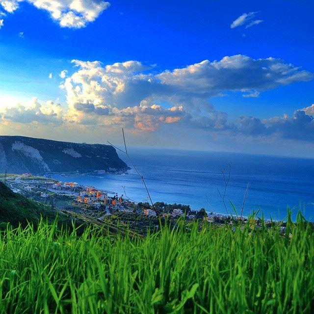Al_kora North Lebanon Rachid 😊 followme @TagsForLikes like4like ...