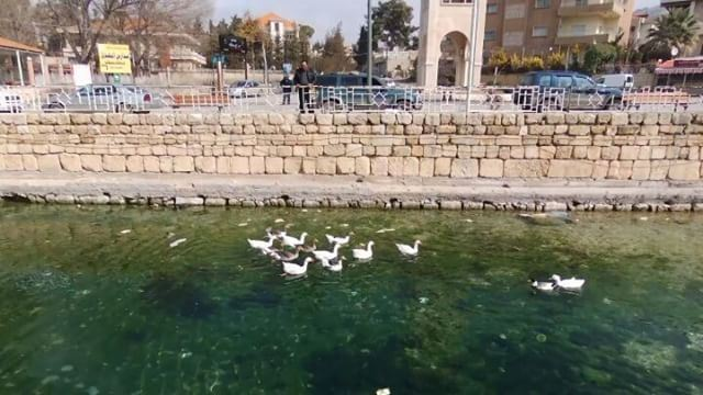 Beautiful weather with some beautiful views. Full video is available on my... (Ras El Ein Park - Baalbeck City)