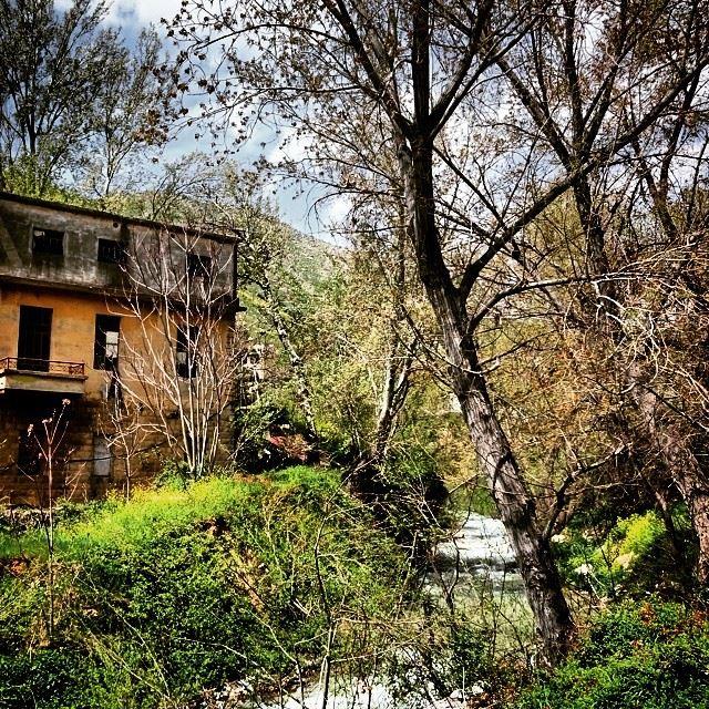Abandoned River Zahle Lebanon Wadi Arayesh Bardawni River Bekaa ... (وادي العرايش)