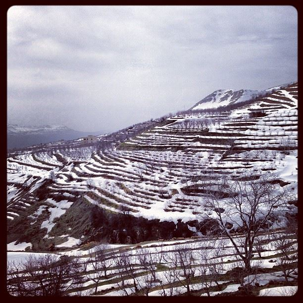 📷 Last Days Of Winter ❄ lebanon laklouk snow snowy mountains nature...