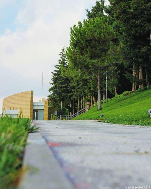 tb tebnin southlebanon perspective trees green architecture ... (Tebnin)