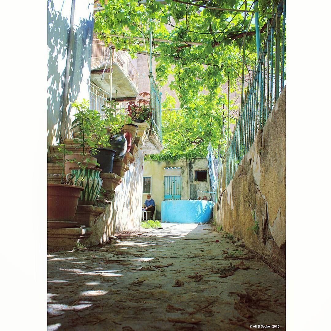 old lebanese house green garden tyre southlebanon perspective ... (Tyre, Lebanon)