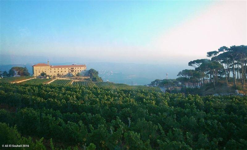 marmoussa nature mountains castle grape sky camping weekend ... (MarMoussa)