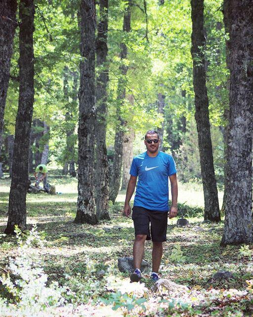 forest northlebanon qammo3a nature me naturelovers lebanon ... (El Qammoûaa)