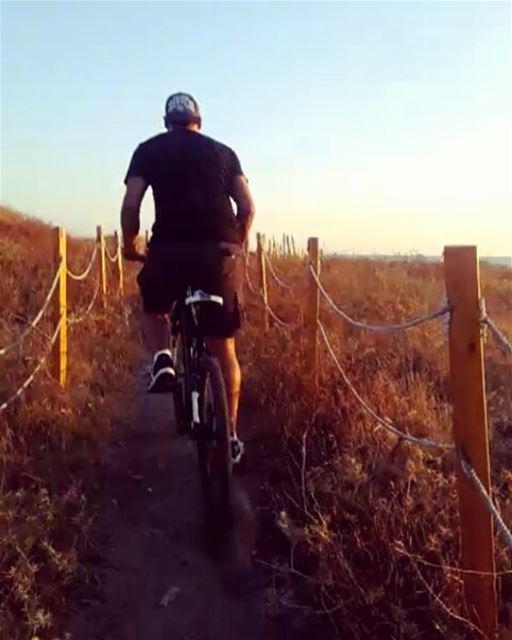 tb me biking mountainbike tyre beach adventure southlebanon ... (Sour Beach)