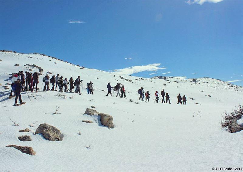 tb goodmorning faqra snow hiking snowshoeing ... (Faqra, Kfardebian)