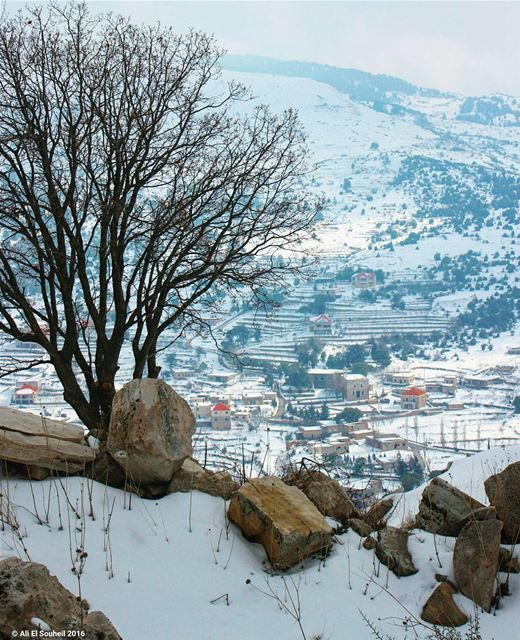 tb hardine snow winter mountains village ... (Hardîne, Liban-Nord, Lebanon)