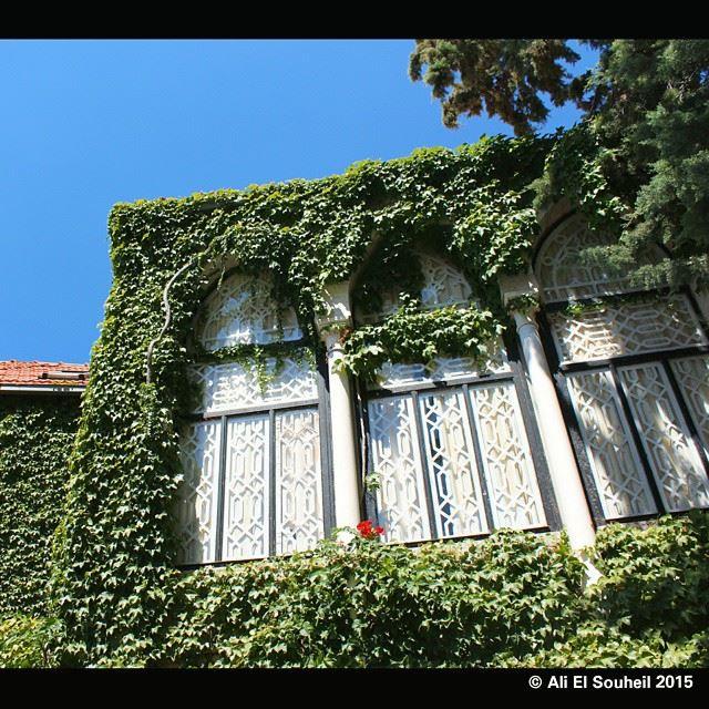 windows old house sky green tree plants lebanon colorful ...