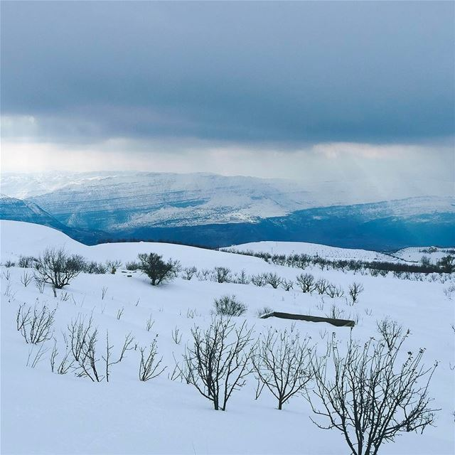 White morning ❄️.. lebanon skitouring instagood webstapick ... (El Laqloûq, Mont-Liban, Lebanon)