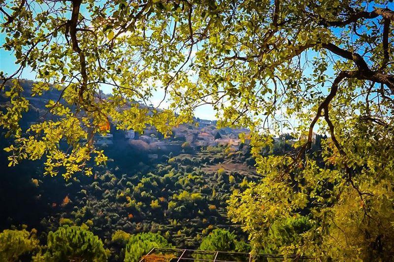 غرّة الطّبيعة 🌿 أسدلتها أيادٍ بديعة 😊A natural mane 🌿 scrolled down by... (دير القمر - Deir El Qamar)