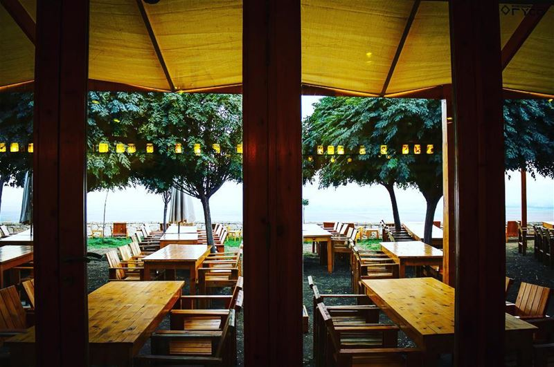 Through the glass doors of this restaurant, I gazed my eyes on its terrace... (Tawlet Ammiq)