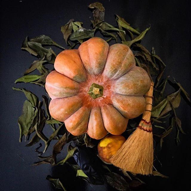 Halloween 👻 = Pumpkin 🎃 -------------------------------------------------