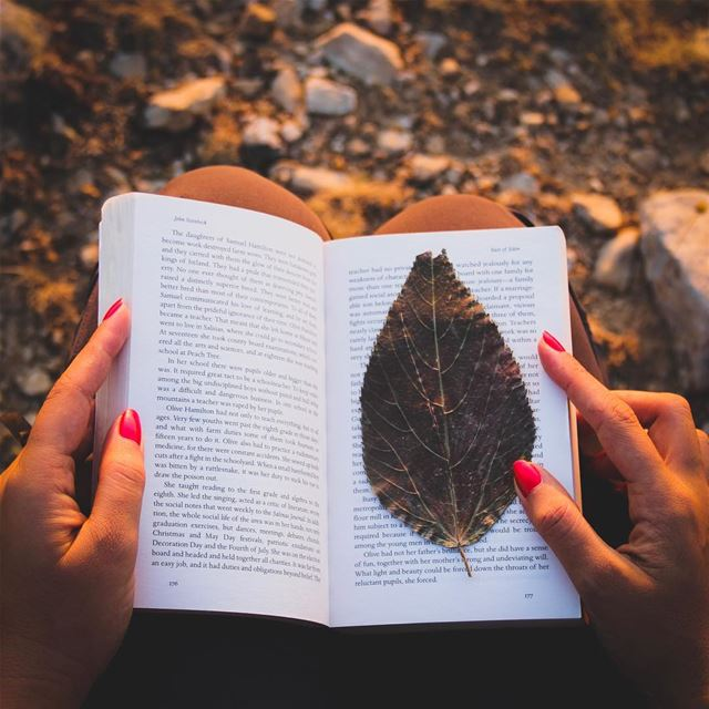 Current Mood 😌 reading in nature 📖🍂 while actually I am at the office 😅