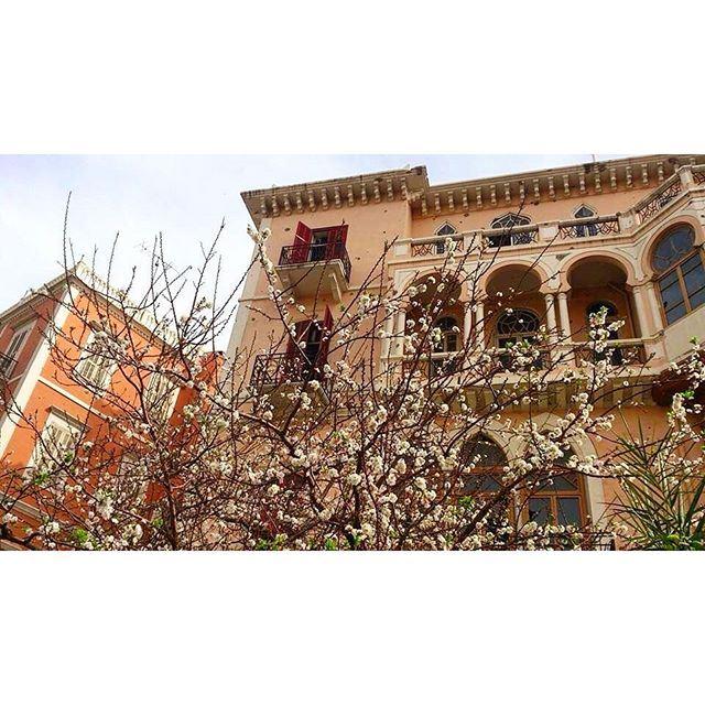 Tripoli Al Tall Place ,