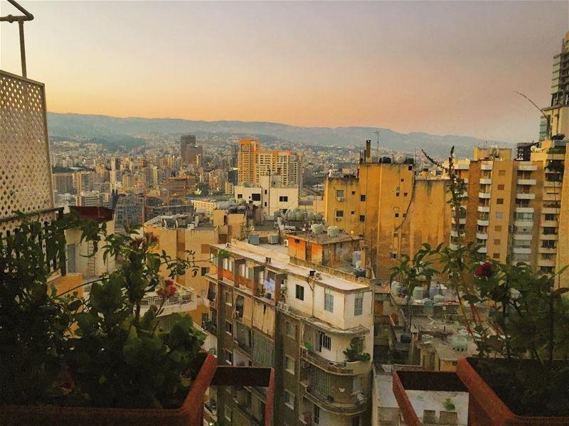 من ع شي سطح من هلسطوح 🌇🌇 From a Beirut rooftop ... goodmorning ...