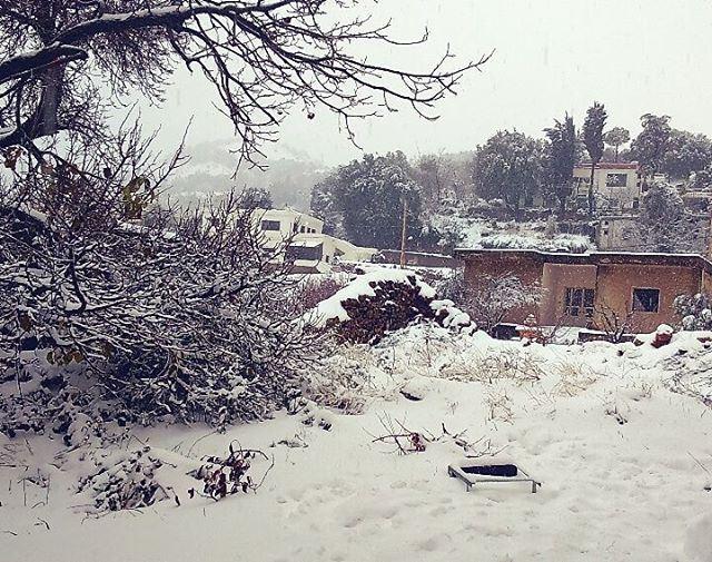 Je vous souhaite une année blanche ⛄⛅☔ whitenewyear happynewyear2016 ... (Aïn Zebdé, Béqaa, Lebanon)