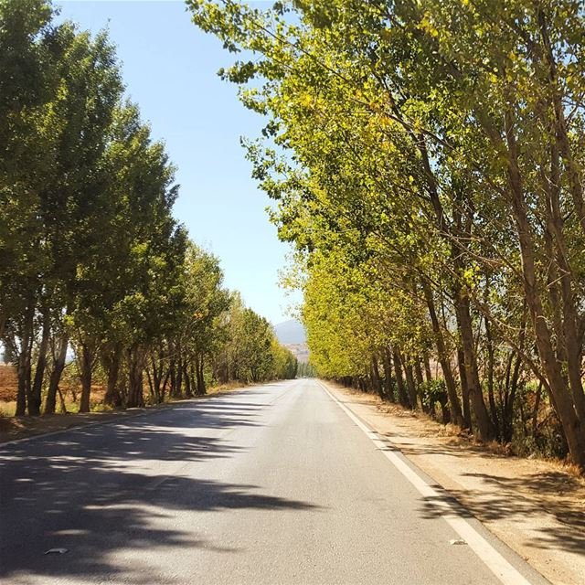 Country roads take me homeTo the place i belong 🍁 (Bekaa valley)