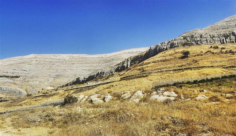 Natural curves, Majestic beauty.- Slopes of... (Sannin, Mont-Liban, Lebanon)