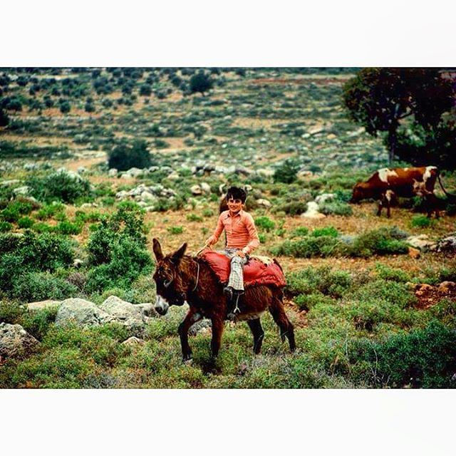 صديقين جنوب لبنان عام ١٩٨٠،