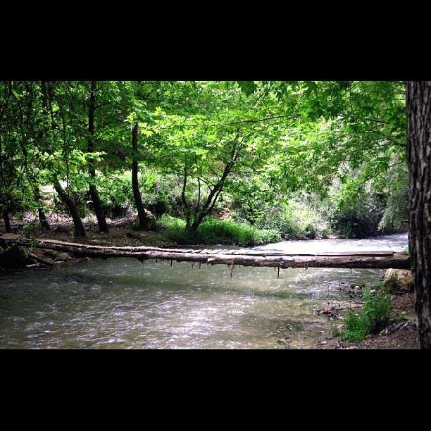 Wooden Bridge over the river bridge river wood insta_lebanon ...