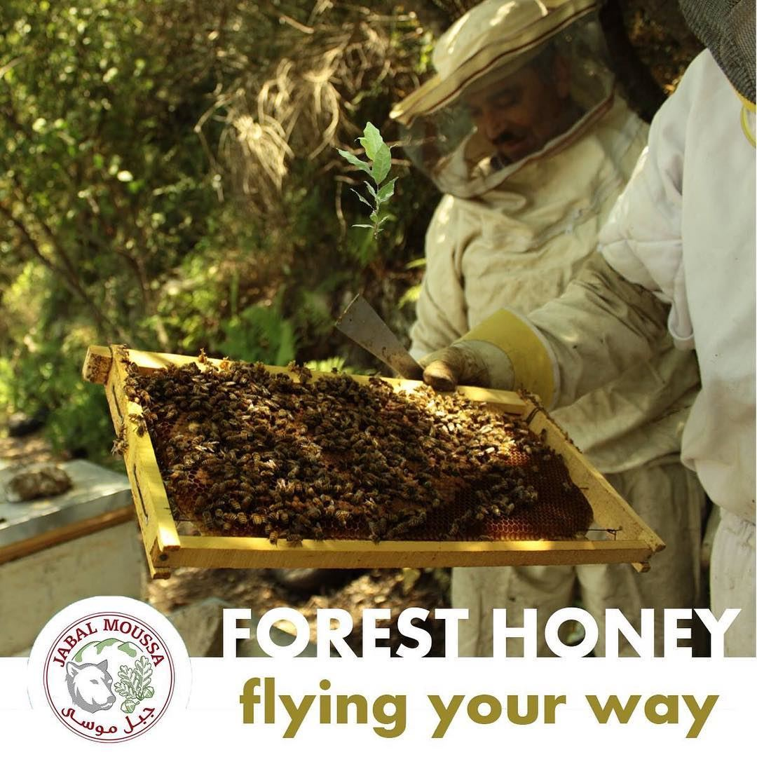 You can now order our all natural honey online! JabalMoussa http://jabal (Jabal Moussa)