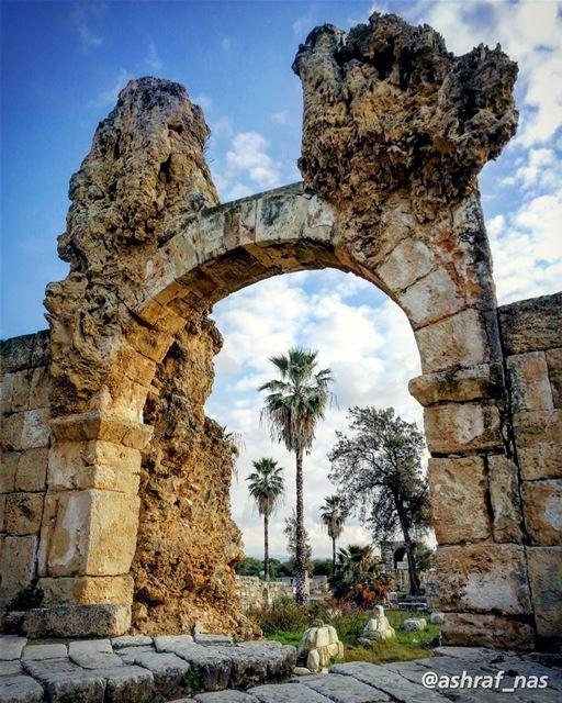 في البال أُغنيةٌ، يا أُخت عن بلدينامي لأكتبها، رأيتُ جسمكِ محمولاً على الز (Roman ruins in Tyre)