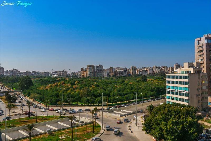 BEIRUT.. Tayouneh - El Hersh بيروت يا بيروت يا قصة بصندوق فرجة كبير...