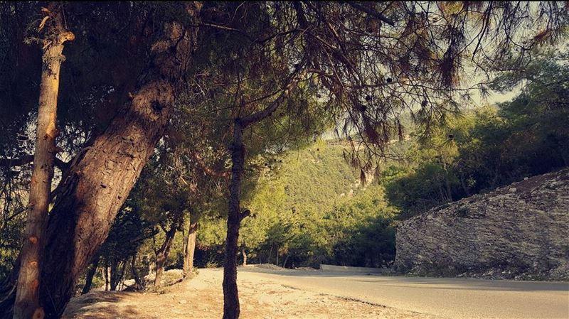 my beautiful lebanon lebanon🇱🇧 proud lebanese great greatshot ...