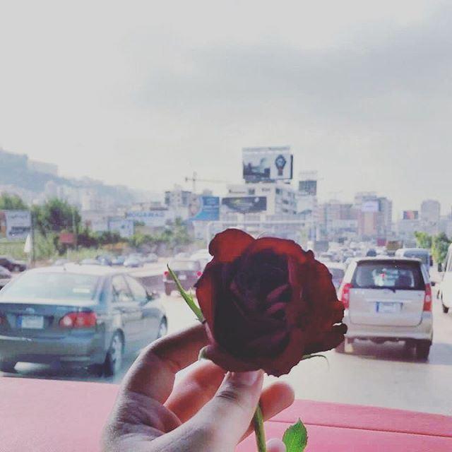 نهاركم سعيد من لبنانGood morning from ...