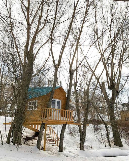 🇱🇧 Tree house in Laklouk,Laklouk has one of the most important ski... (El Laklouk, Mont-Liban, Lebanon)