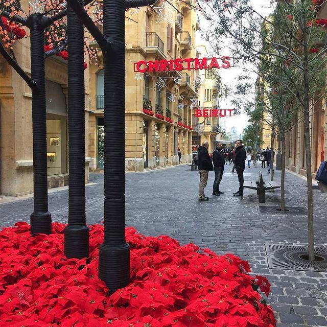 ✨...هيك العيد عنّا ببيروتBy @chefsallyjane ChristmasInLebanon ... (Downtown, Beirut, Lebanon)