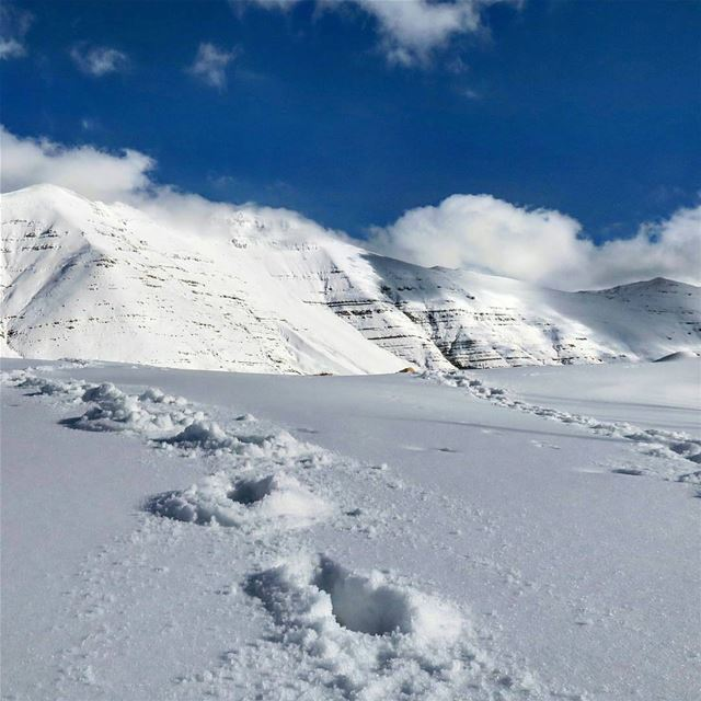 ما كدت أرسل نظرة خاطفة إلى الجبال المتشامخة، المتقاعسة، الحاملة على مناكبها (Faraya, Mont-Liban, Lebanon)