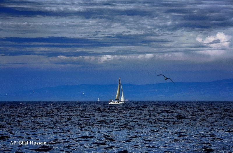 Gulls flying near a small sailing boat on the Mediterranean Sea in Beirut,...