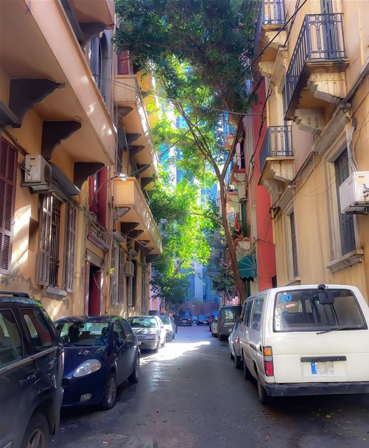 Streets of beirut At the bottom of this narrow alley, stands a ...