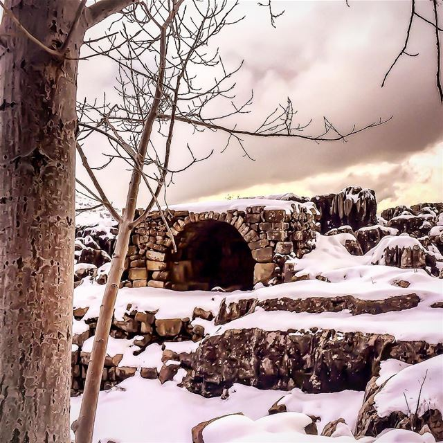 Out of this world ig_mood winterwonderland tree ruins snow landscape...