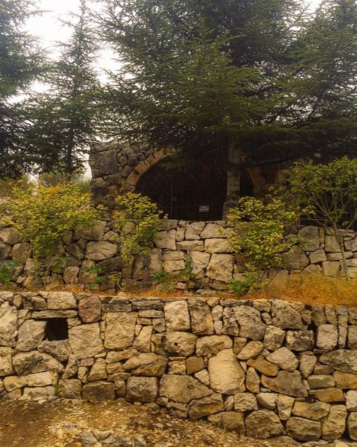 Old winery stonewall trees nature ig_nature ig_lebanon rural_love ...