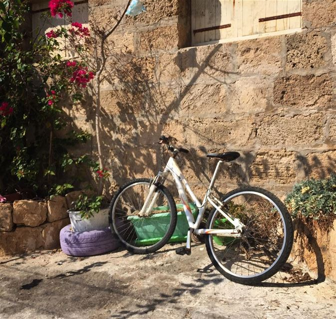 A smell of holidays still floating in the streets bicycle ig_lebanon ...
